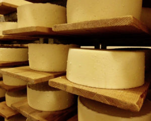 ArchivesEnFranceAussi_Novembre2017_Fromages