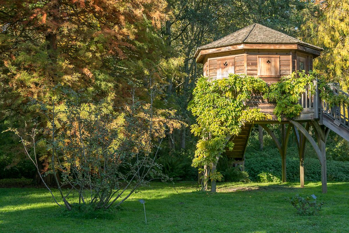 Arboretum automne