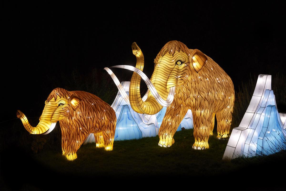 Espèces en Voie d'Illumination aux Jardins des Plantes de Paris