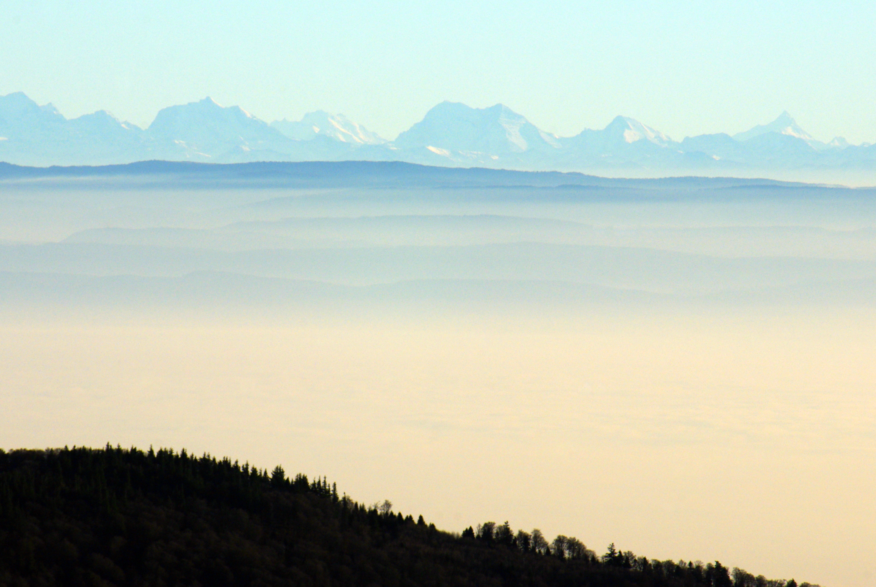 Grand Ballon View of the Alps © French Moments