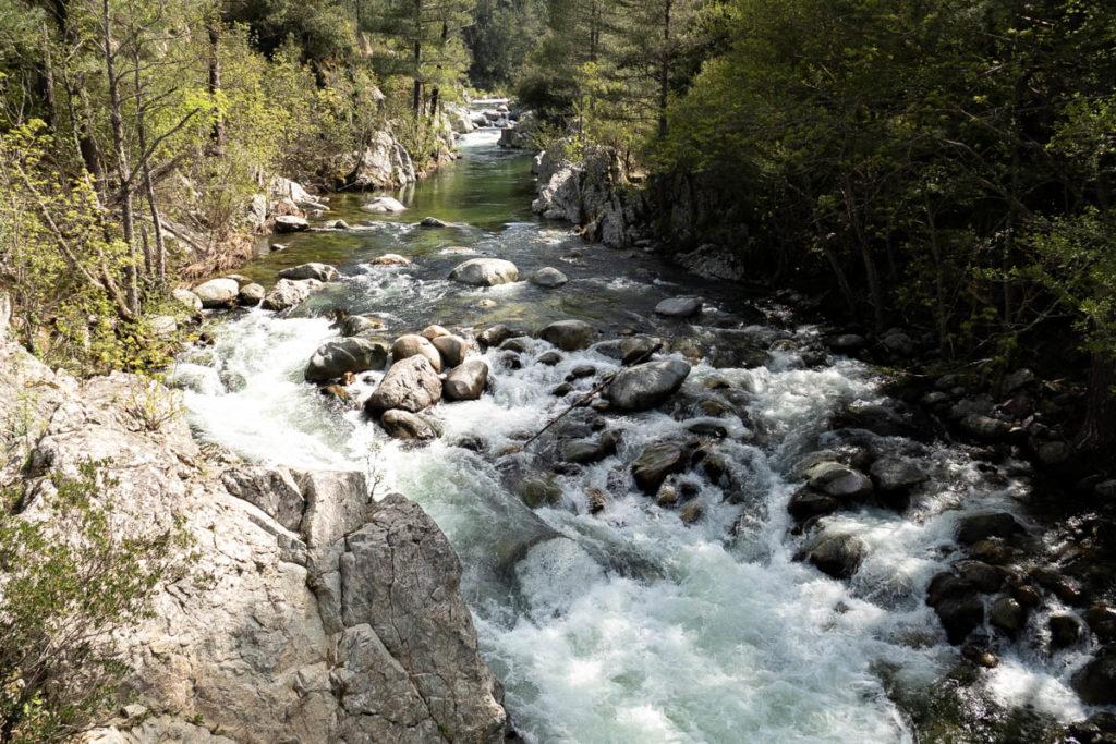 la rivière fiumorbo en Corse