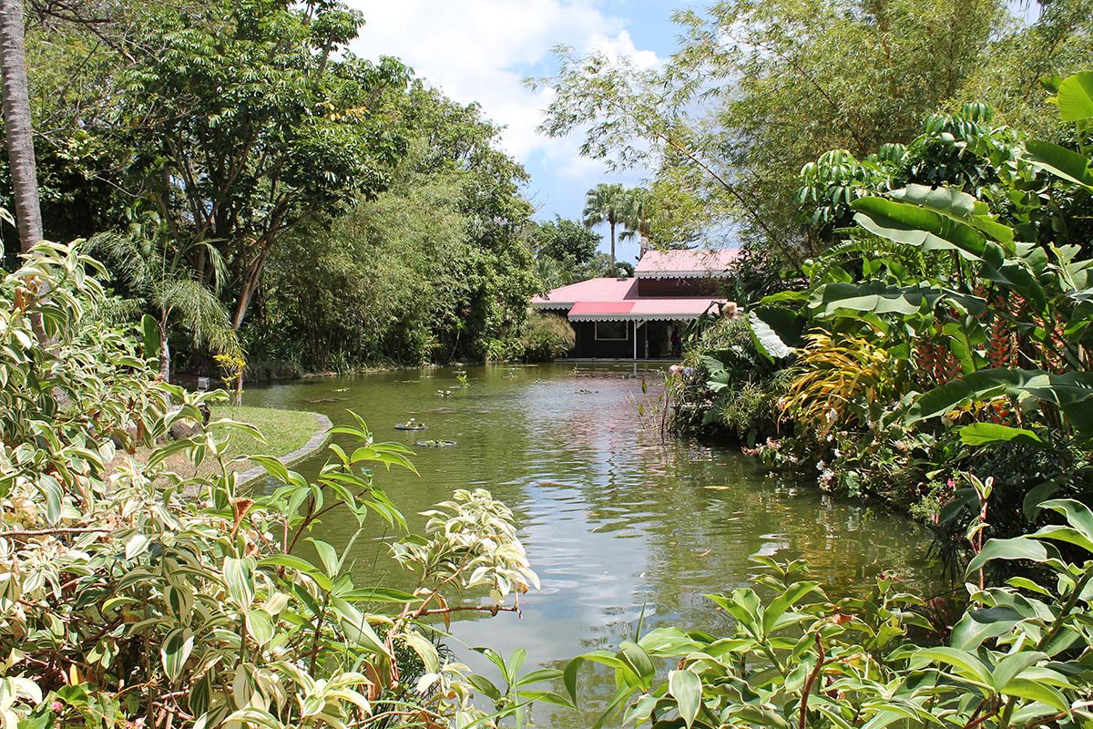 domaine en Guadeloupe